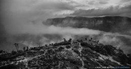 Photo Course Participants  - Blue Mountains