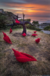 """""""Ten Red Crows"""""""