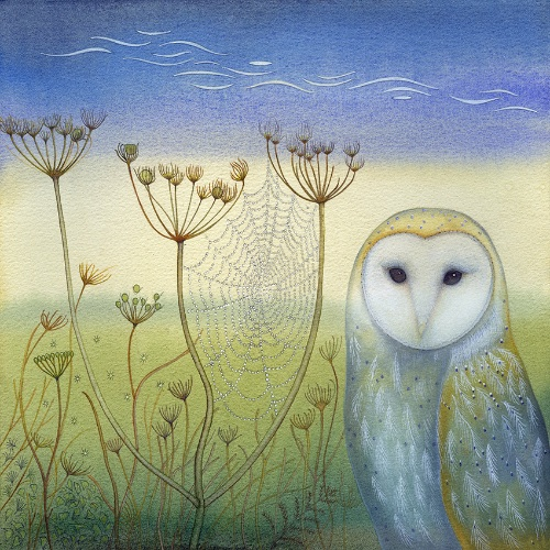 Barn Owl and Spider's Web (print and card)