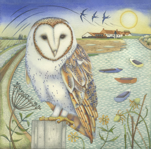 Barn Owl at Overy Staithe. (print)