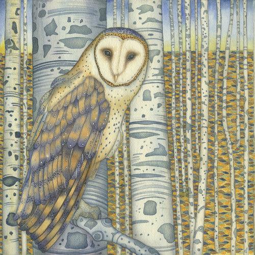 Barn Owl in the Birch Trees