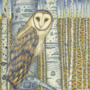 Barn Owl in the Birch Wood (Print and card)