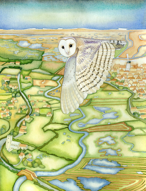 Barn Owl over the Glaven Valley (print and card)