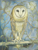 Barn Owl among the Willow (print and card)