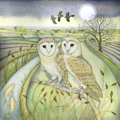 Bar Owls (print and card)