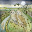 Barn Owls (print and card)