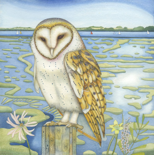 Across the Marsh (print)