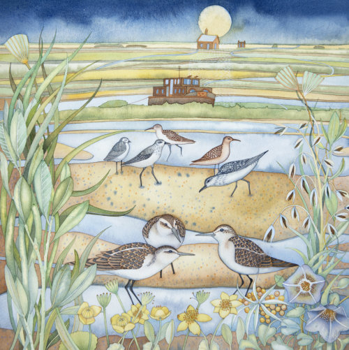 Wading Birds at Blakeney (print and card)
