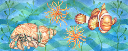 Crab and Clown Fish (NNUH)