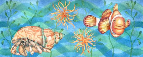 Crab and Clown Fish (NNUH)