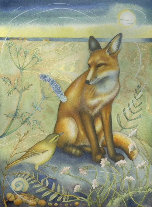 Fox in the Dunes. (print)