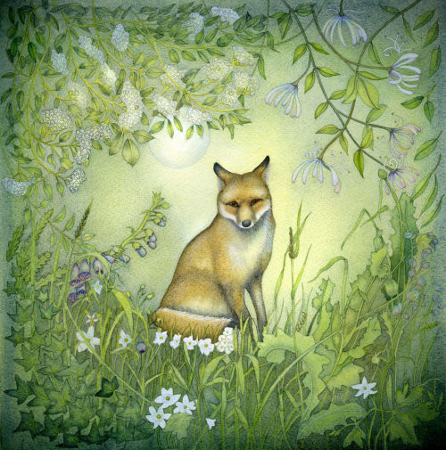 Fox in the Garden (print and card)