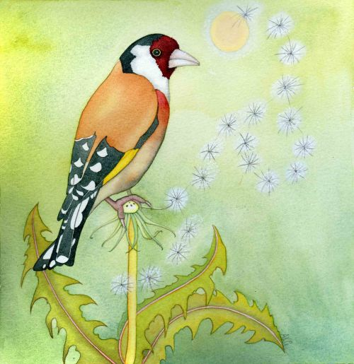 Goldfinch (print and card)