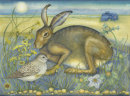 Hare at Blakeney Point (print and card)