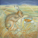 Hare on the Marshes (print and card)