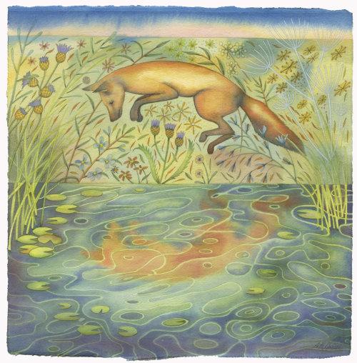 Jumping Fox and his Reflection (print)
