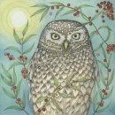 'Little Owl'. Print