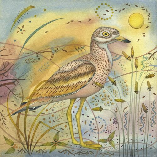 Stone Curlew (28 x 28cm) Mixed media painting on paper