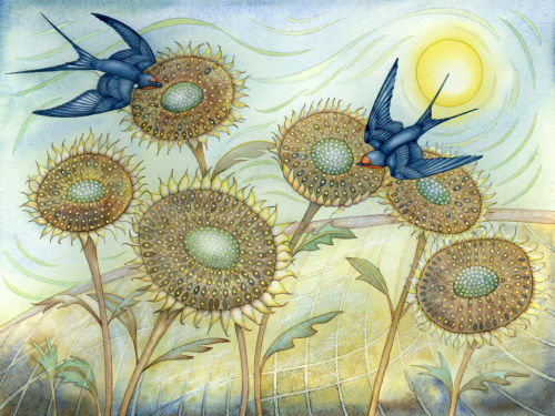 Swallows and Sunflowers (print and card)
