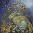 Startled Hare (print)