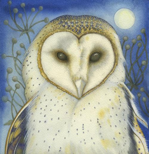The White Owl (print)