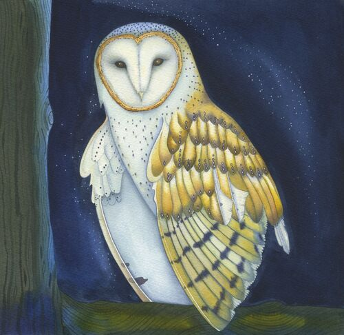 'The Winter Owl' Mixed media painting on 425gsm paper (28.5 x 28.5cm)