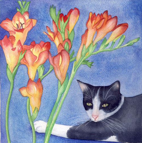 Puss and Fresias (print and card)