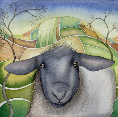 Sheep (print and card)