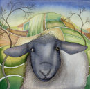 Sheep (print and card)
