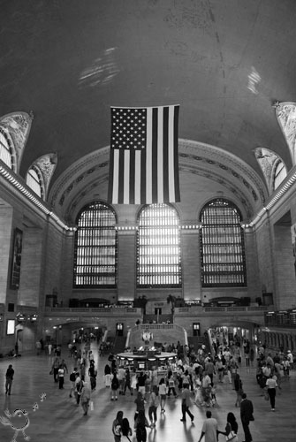 Under the Flag<br>