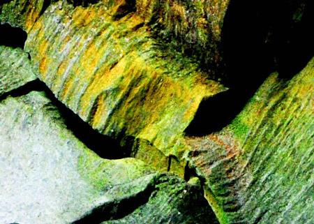 Cosmic - Cavern Creatures