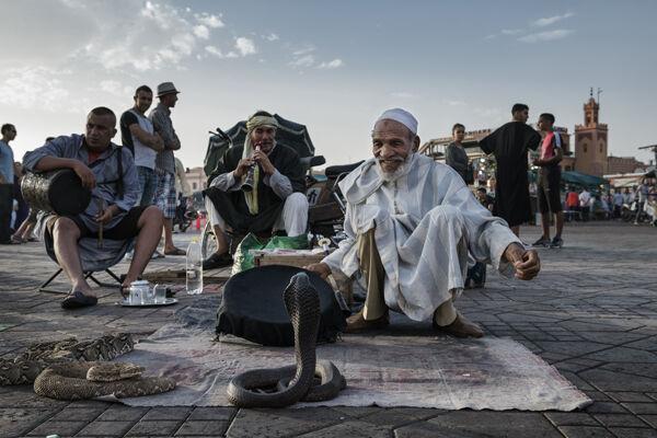 Snake Charmers Marrakech