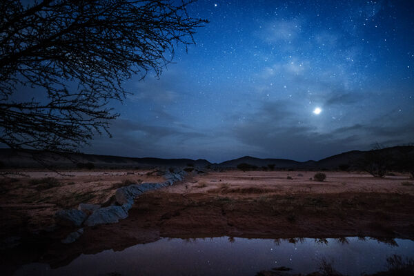 Moonlight in the desert.