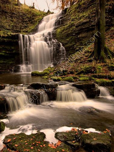 scalebar waterfall