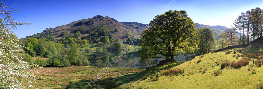 lake district photo loughrigg tarn