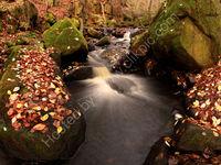 peak district photo:Padley gorge autumn
