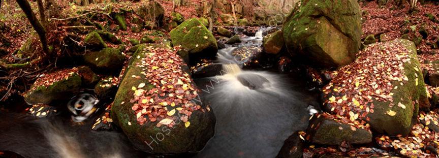 peak district photo:padley gorge stream