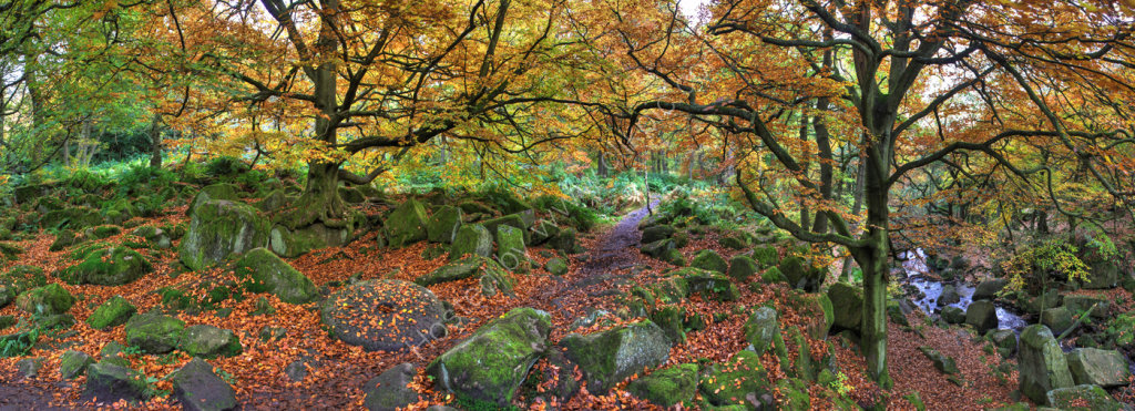peak district photo padley gorge new