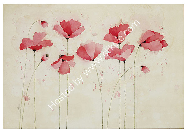 RED POPPIES 7