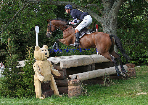 William Fox-Pitt & SEACOOKIE