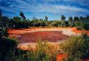 Dried-up Pond