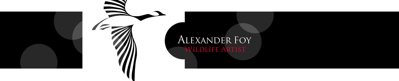Alexander Foy - Abstract Wildlife Artist