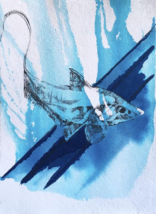 Ink Drawing of Deep Sea Fish