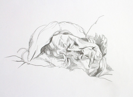 Man Sleeping sketch by Alexandra Gould