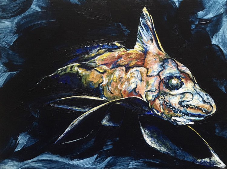 Ghost Shark / Chimera painting in acrylic