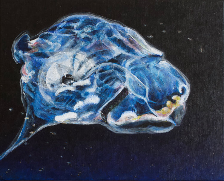 Painting of a Stalked Ascidean (Sea Squirt) of the Five Deeps