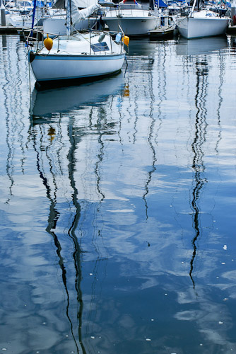 Harbour reflections Rushcutters Bay Sydney