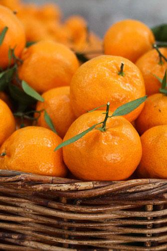 Basket of market oranges