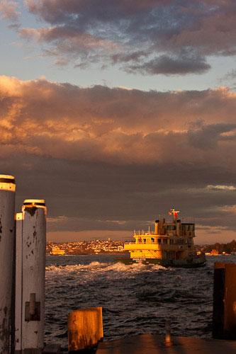 Sydney ferry sunset