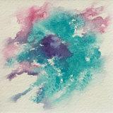anemone turquoise